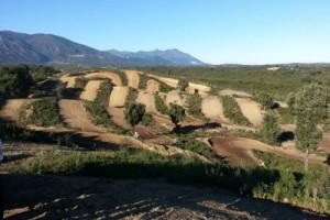 Circuit de motocross de l'Oriente