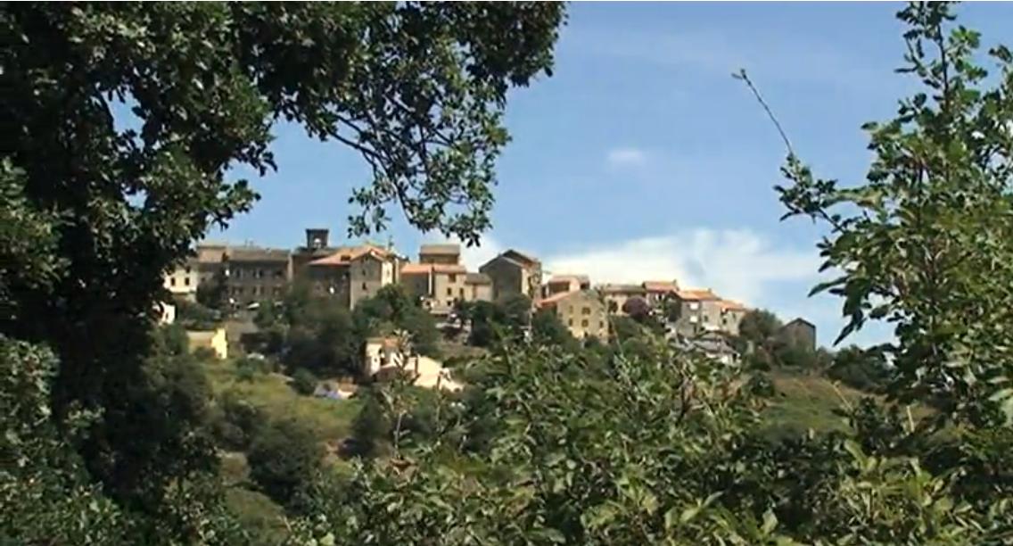 Linguizzetta été 2011