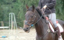 Les cavaliers d'Aleria
