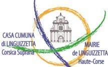 Réunion publique jeudi 7 août à 16h00 Linguizzetta Village